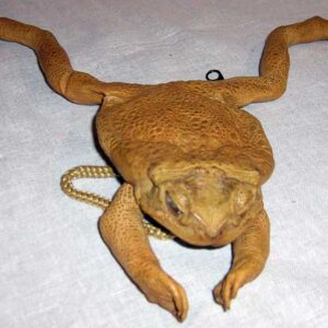 Toad Neck Purse with 4 legs