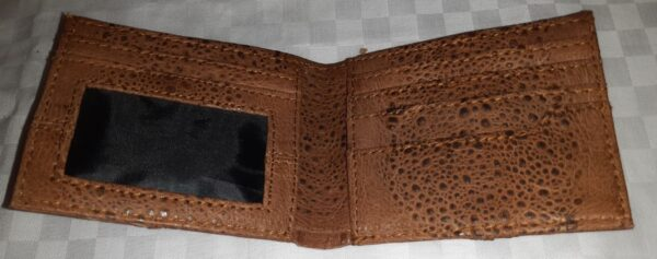 Men's Bifold Canetoad Wallet