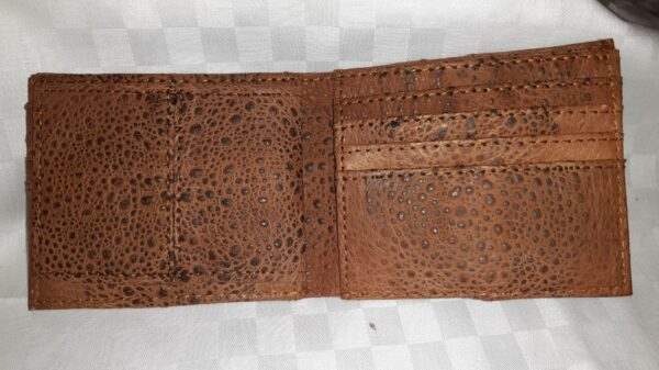 Men's Trifold Canetoad Wallet
